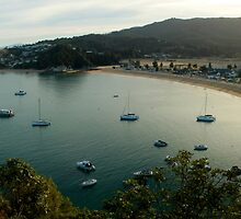 Kaiteriteri Bay by Bryony Griffiths