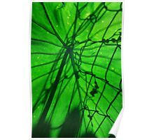 Shadow on leaf Poster