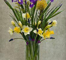 Daffodils and Irises by Miroslava Balazova