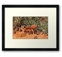 Tippy toes Framed Print