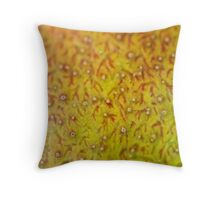 Mango Skin Closeup Throw Pillow
