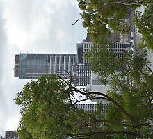 Brisbane City through the trees by Ian McKenzie