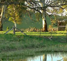 Tranquility - Hume, ACT, Australia. by Martin Lomé