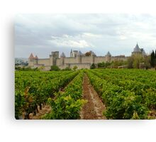Vineyards Of Carcassone Canvas Print