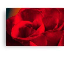 Satin-red rose petals Canvas Print