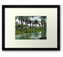 Wet Hot Humid Tropical Framed Print