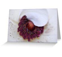 Hiding Beauty Greeting Card