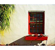 come to my window Photographic Print