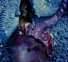 portrait of woman 4/ projection by Jacek Lidwin