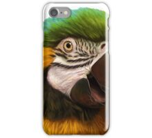 Blue and gold macaw realistic painting iPhone Case/Skin