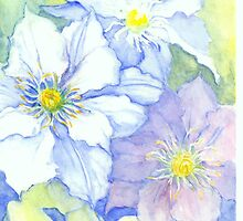 Clematis by Pauline Persing