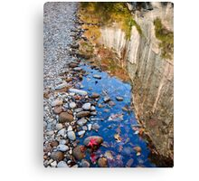 Bufflao River Reflections Canvas Print