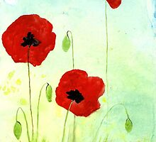 POPPIES  by Rosetta Jallow