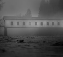 Historic covered bridge near Eugene Oregon by pdsfotoart