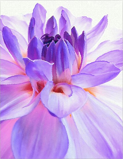 Loving the Light in Dahlia by paintingsheep