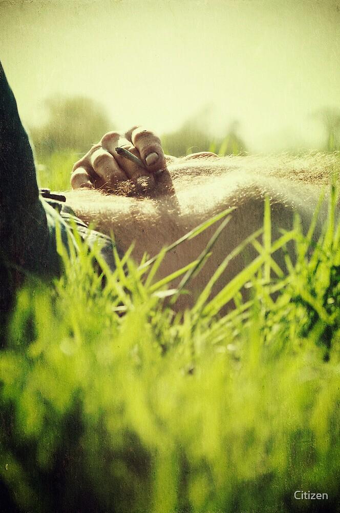 Smoke in the grass ii by Nikki Smith