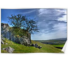 Lonely Tree at Ingleton, North Yorkshire. Poster