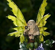 Garden Fairy by Robert Taylor