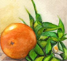 Orange and Blossom by Amy-Elyse Neer