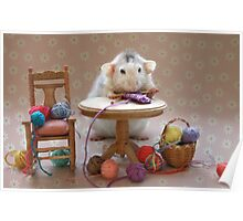 Rosie's first knitting lesson! Poster