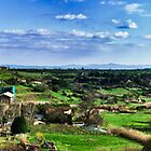 Panorama of Tuscania - San Pietro and Fields by Marco Borzacconi