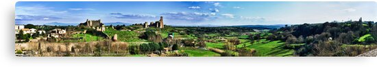 Panorama of Tuscania - San Pietro and Fields by Marco Borzacconi
