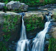 Carrington Falls, NSW Australia by Laura  Knight
