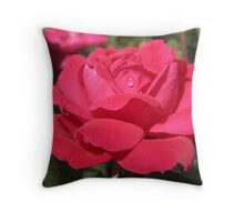 Many a tear has to fall! But its all in the game. Throw Pillow