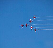Aerial Acrobatics by prasitmankad