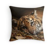 Baby Tiger - Model Throw Pillow