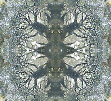 Silver Snowflake (Marcasite in Agate) by Stephanie Bateman-Graham
