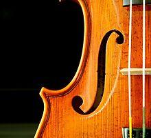 Violin by scruffycat
