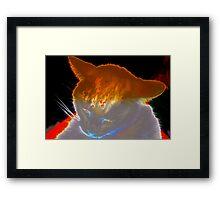 Spooky white cat Framed Print