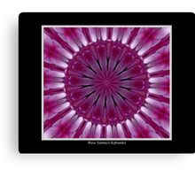 Purple Phlox Kaleidoscope #1 Canvas Print