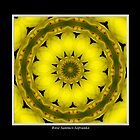 Yellow Lily Kaleidoscope #1 by Rose Santuci-Sofranko