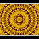 Yellow Flower Kaleidoscope #1 by Rose Santuci-Sofranko