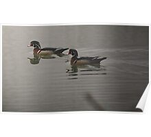 Painted Wood Ducks Poster