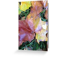 Nature Heals  Greeting Card