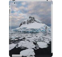 Booth Island, Antarctica iPad Case/Skin