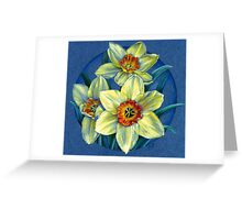 Daffodils - the joys of spring  Greeting Card
