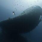 The wreck -Cedar Pride- by Gorden