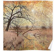 Elmley in Winter with Textures Poster