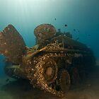 The Tank Wreck of Jordan by Gorden