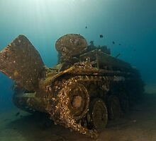 The Tank Wreck of Jordan by Gorden