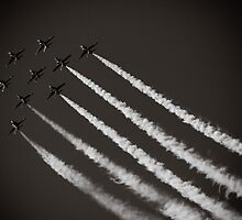 Formation Flying by Andy Clist