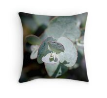 Cosy Location Throw Pillow