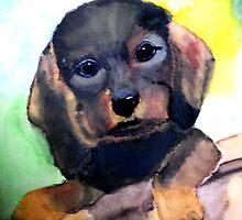 Puppy in the garden 2 by Heidi Mooney-Hill
