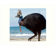 Beach Comber - cassowary at Etty Bay Art Print