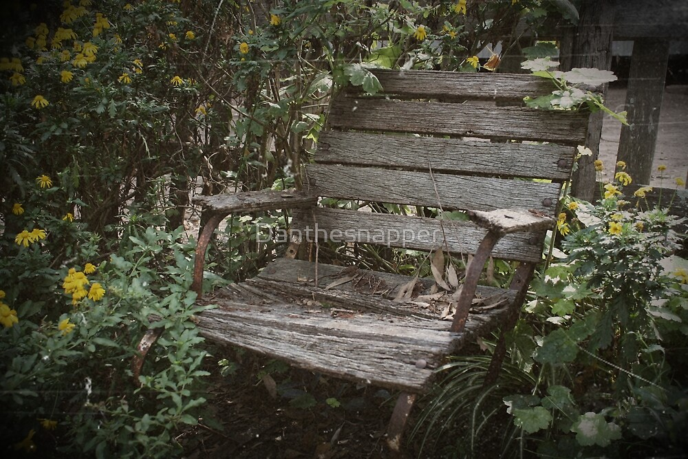 Old Chair by Danthesnapper