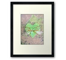 Enchanted Wings  Framed Print
